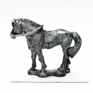 Cavalry, Horse standing