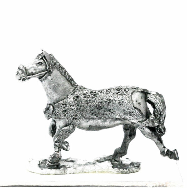 Horse, Animal Skin blanket, running