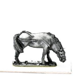 Cavalry Horse, grazing