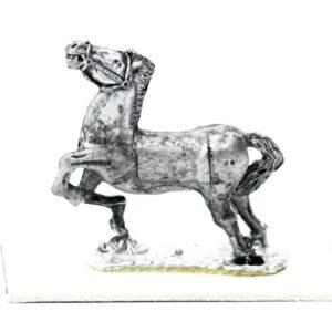 Horse, head held high
