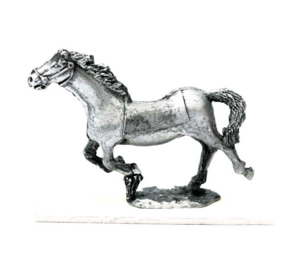 Horse galloping, blanket