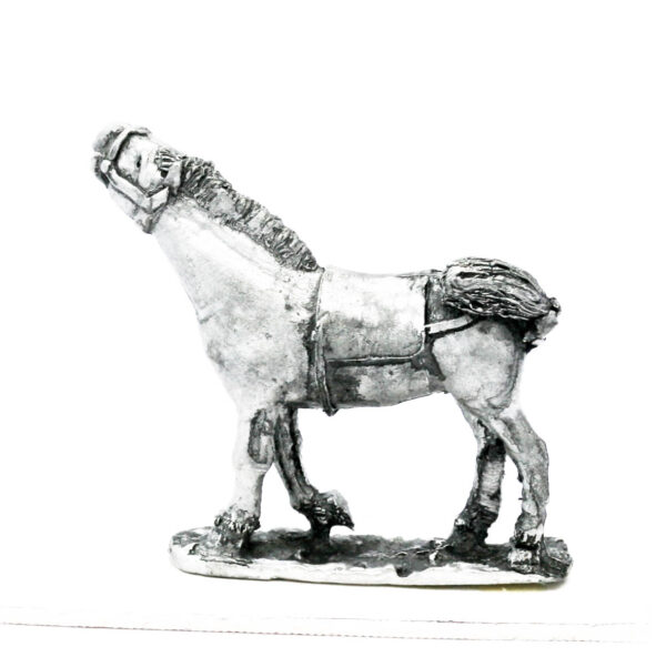 Horse, neck stretched up high