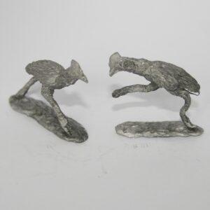 Two Cassowaries